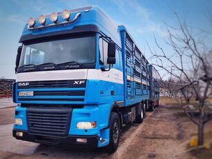 PEZZAIOLI eläinkuljetusauto + eläinkuljetusperävaunu