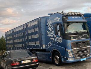VOLVO TOP FH13 540-EURO 6 -4 level Jumbo PLAVAC   eläinkuljetusauto